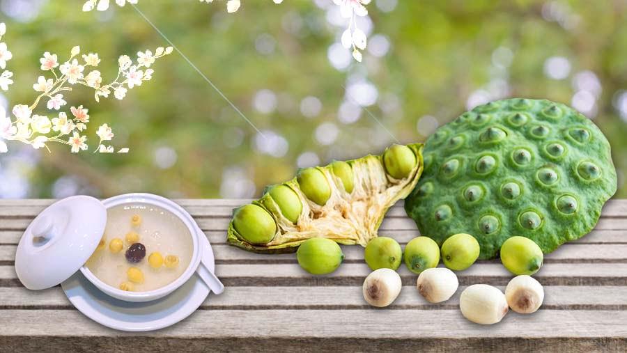 Tác dụng của món yến chưng hạt sen táo đỏ